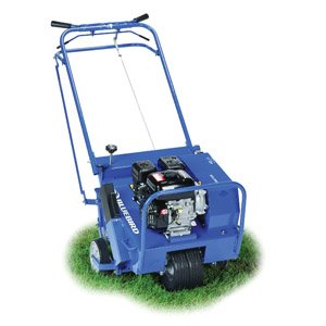 Spring Lawn Care Thatch Aeration And Fertilizers How